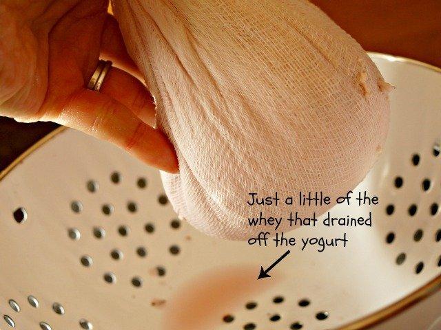Draining the whey off yogurt cheese