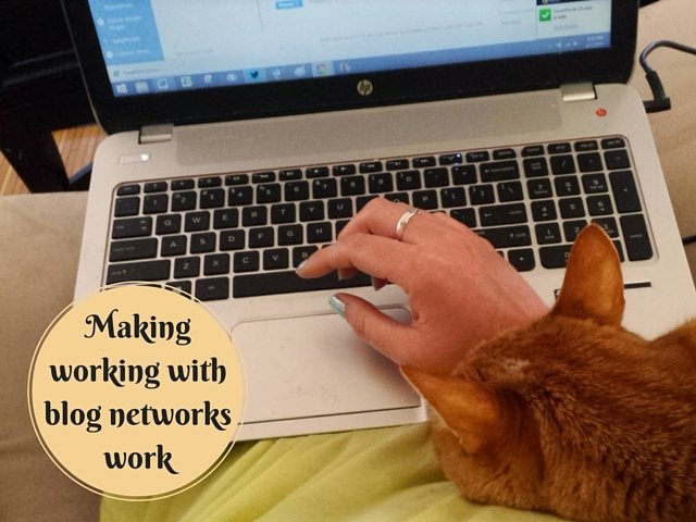 Making working with blog networks work for you SoFab and Collective Bias