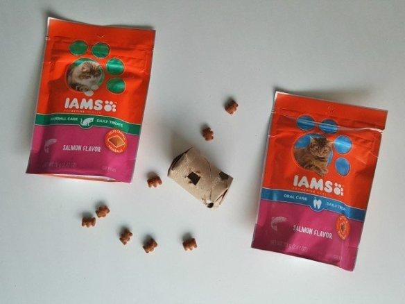 Ready to enjoy the DIY Cat treat dispenser with IAMS cat treats