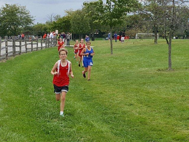 Little Miss running cross country