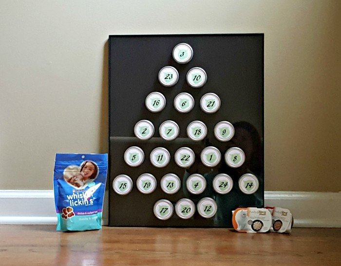 Perfect DIY Pet advent calendar idea