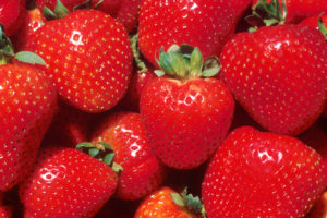 strawberries are a really healthy food and low GI