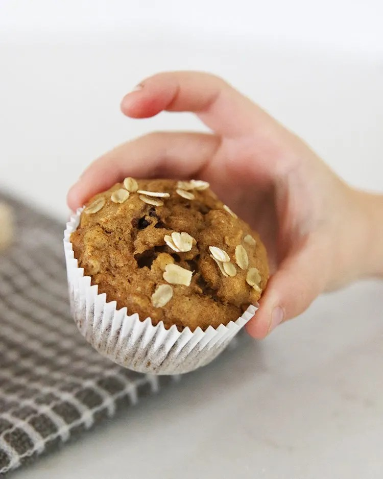 Perfect for fall, try out this low waste pumpkin cherry muffin recipe. We used fresh pumpkin from our garden but canned pumpkin will work just as well. Enjoy! | #HonestlyModern #zerowaste #zerowastefood #recipe
