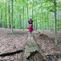 Explore Outdoors With Kids