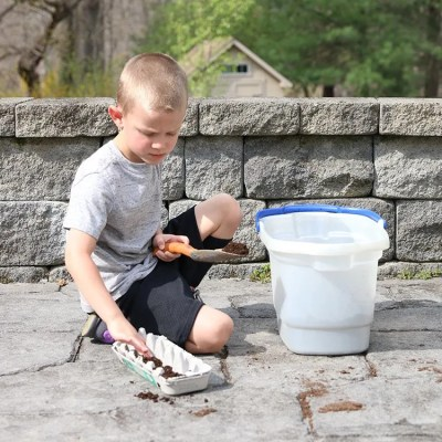 7 Tips for Growing Seedlings with Kids