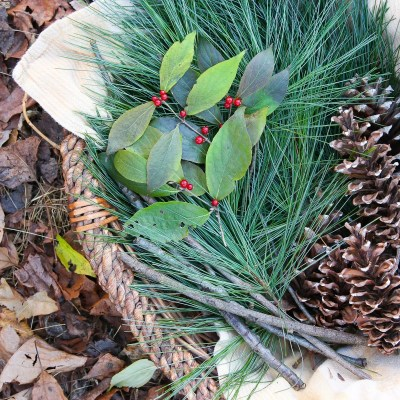 Easy and Free Eco-Friendly Foraging For Christmas Decorations
