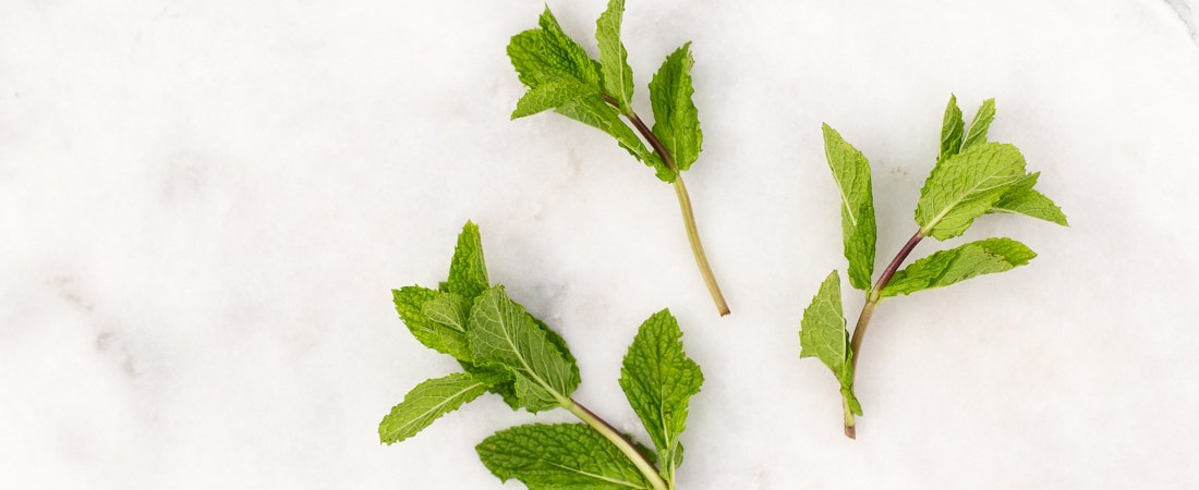 So much more than a pretty garnish, mint offers heaps of medicinal benefits! Learn more, plus how to prepare it, tips for storing, and ideas for cooking. | via Honestly Nourished