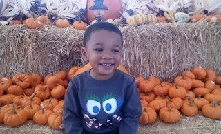 MJ Pumpkin Patch 2009-2