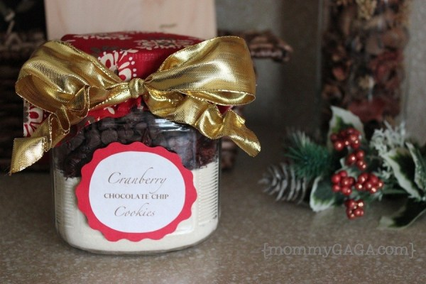 How to make homemade Christmas cookies - DIY Cranberry Chocolate Chip Cookie Gift Jar