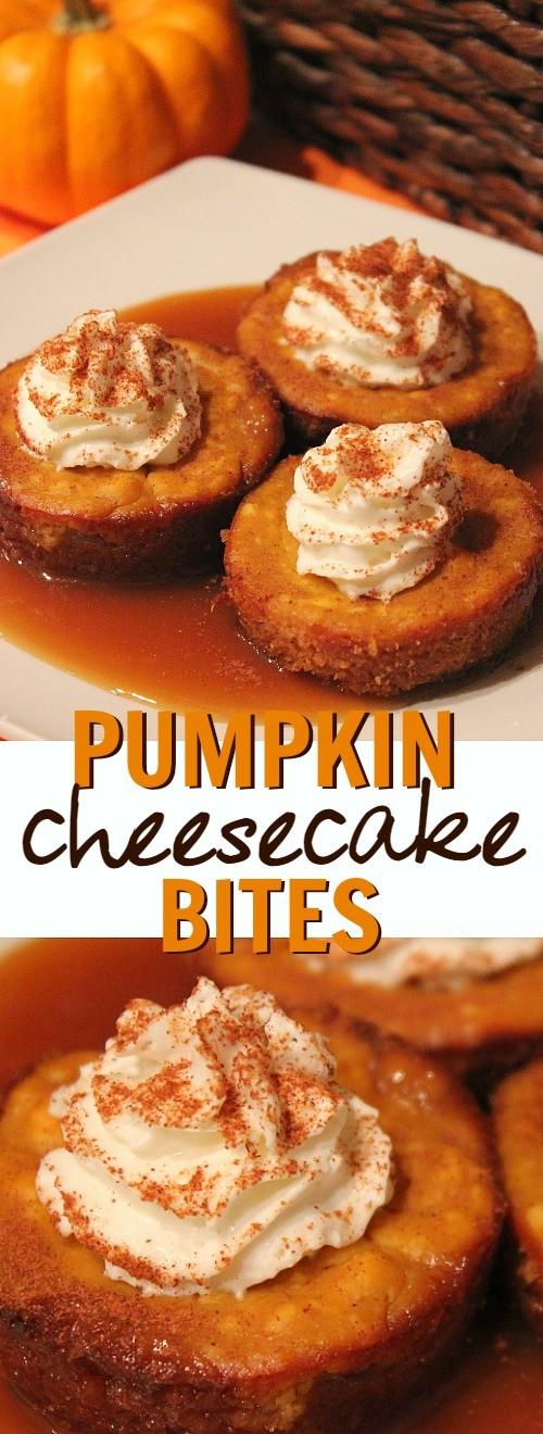 Pumpkin caramel cheesecake bites dessert recipe - this is such a delicious Fall pumpkin dessert idea1