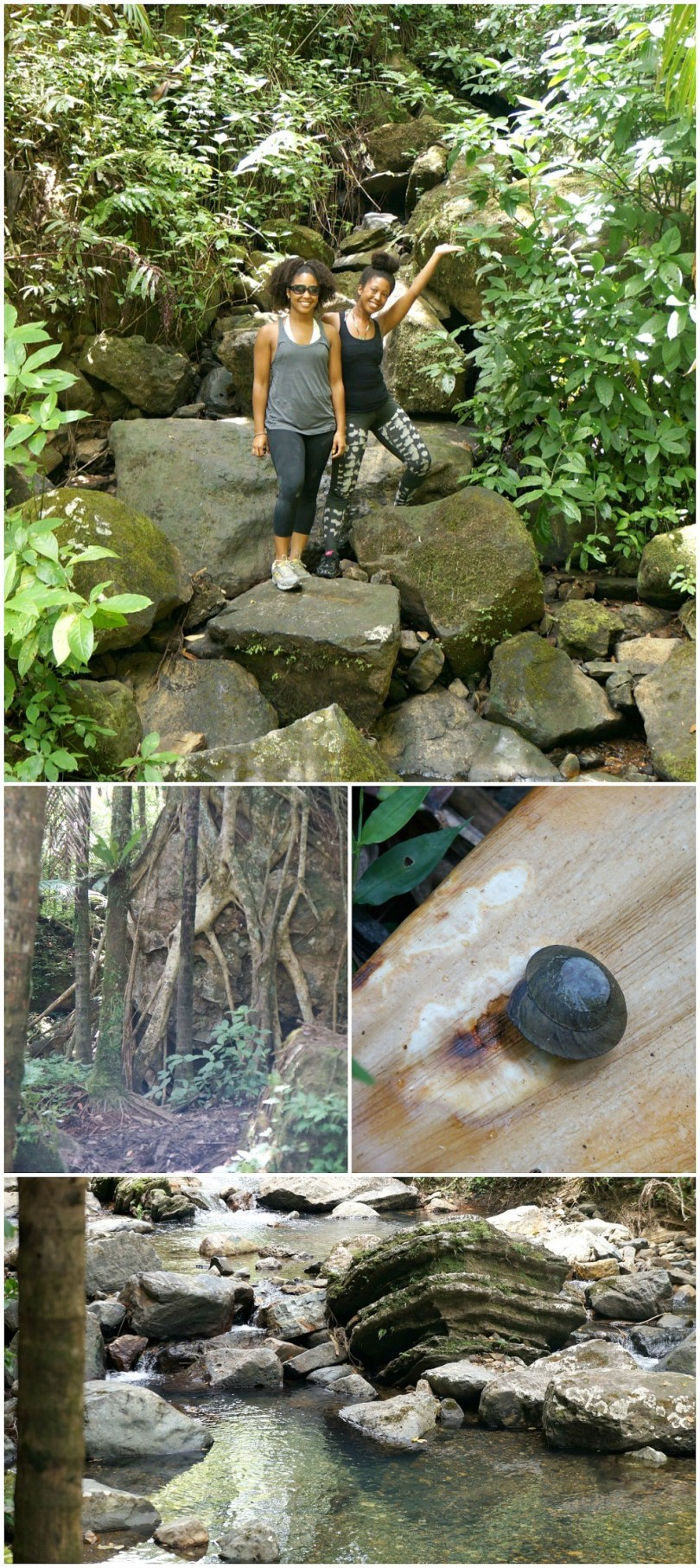 Hiking La Mina Falls trail in El Yunque Rainforest, Puerto Rico