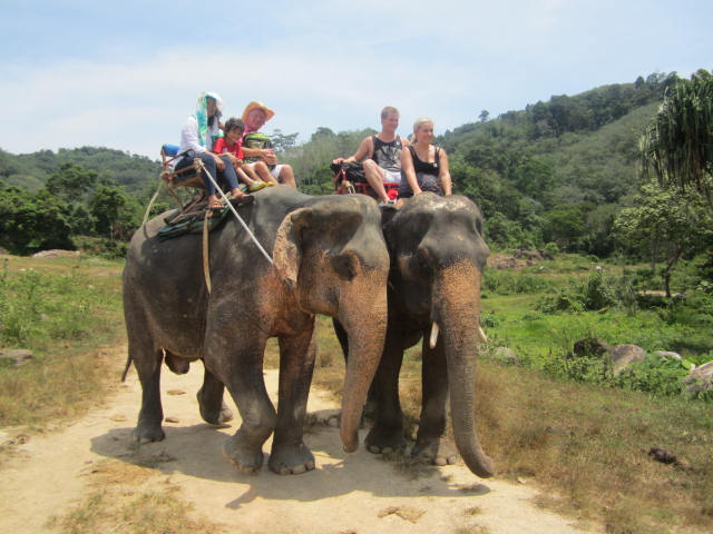 Family riding elephants in Phuket, Thailand, Flickr, the_millers