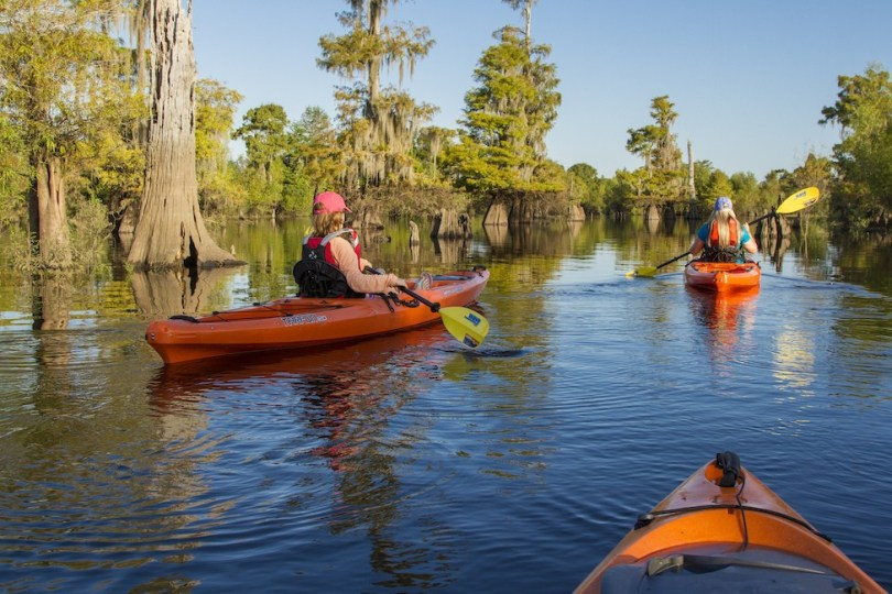 Kayaking the Dead Lakes in Gulf County, FL