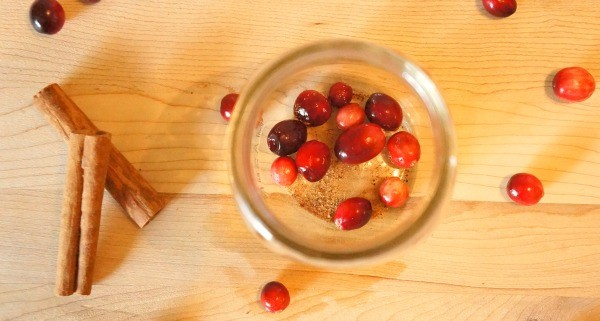 How to make a holiday stove top potpourri gift - cranberries on the bottom