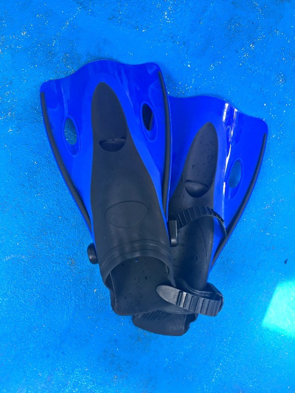 Snorkeling fins from Fury Catamaran tours, Cozumel, Mexico