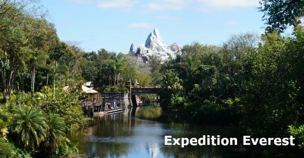 Disney's Animal Kingdom theme park, View of Expedition Everest Mountain
