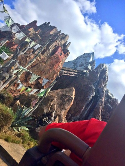 Disney's Animal Kingdom theme park, riding the Expedition Everest roller coaster