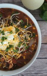 Crock pot black bean chicken chili recipe