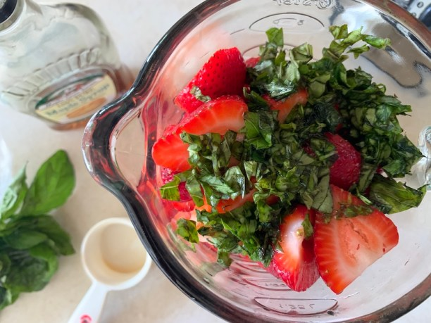 Strawberry sorbet recipe in a blender