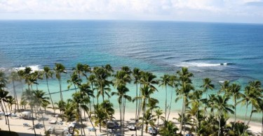 Caribbean beach, ocean view with palm trees