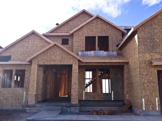 honeybear house structure_3