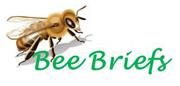 Bee Brief bee