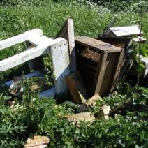 Hives colpite da vandali in Northamptonshire, Regno Unito.  Foto di Brian Dennis.