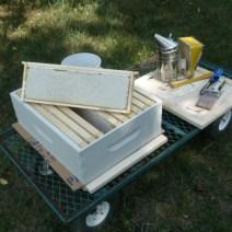 Cornici bellissime di miele pronto per estrarre da Aaron Dionne, Michigan.