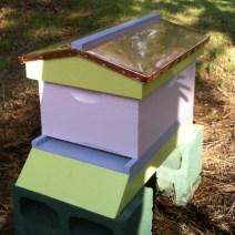 Questo alveare da Cindi G è troppo bella per le api!