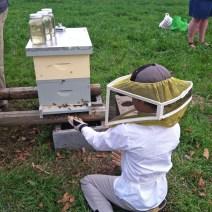 Ecco il nostro figlio Koty seduto con il suo nuovo alveare di api scorso anno.