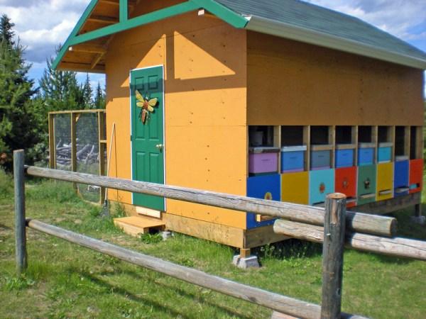 Bee coop wiht chicken run on the left.