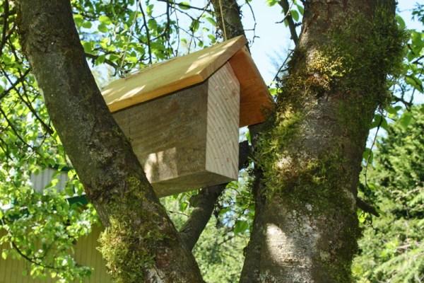Nesting-block-in-tree