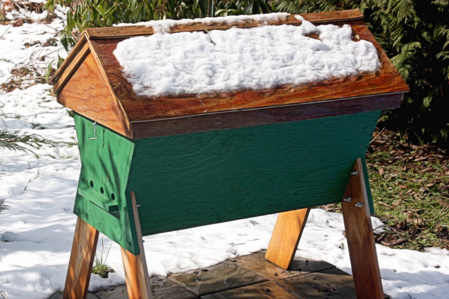Overwintered ten: I do the same wintertime prep for all my hives, regardless of their configuration.