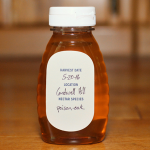 Old-Blue-Raw-Honey-back