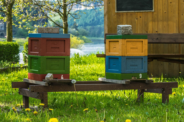 Unless you have hundreds of hives, I recommend rotating brood boxes on a case-by-case basis.