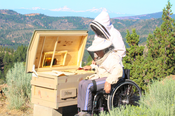 Hinged lid: The heavy duty hinges make the hive easy to open. Inside the lid is a frame support that can also be used for tools. On the lower left of the hive is a covered inspection window.