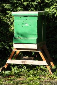 The more hive stands I needed, the simpler they became. This one is made of scraps.