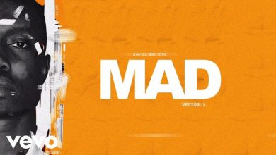 """Photo of [Video] Vector – """"Mad"""""""