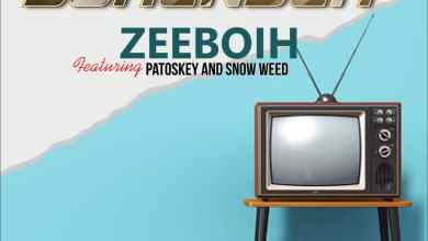 Photo of MP3: ZeeBoih Ft. Patoskey x Snow Weed – No Surrender