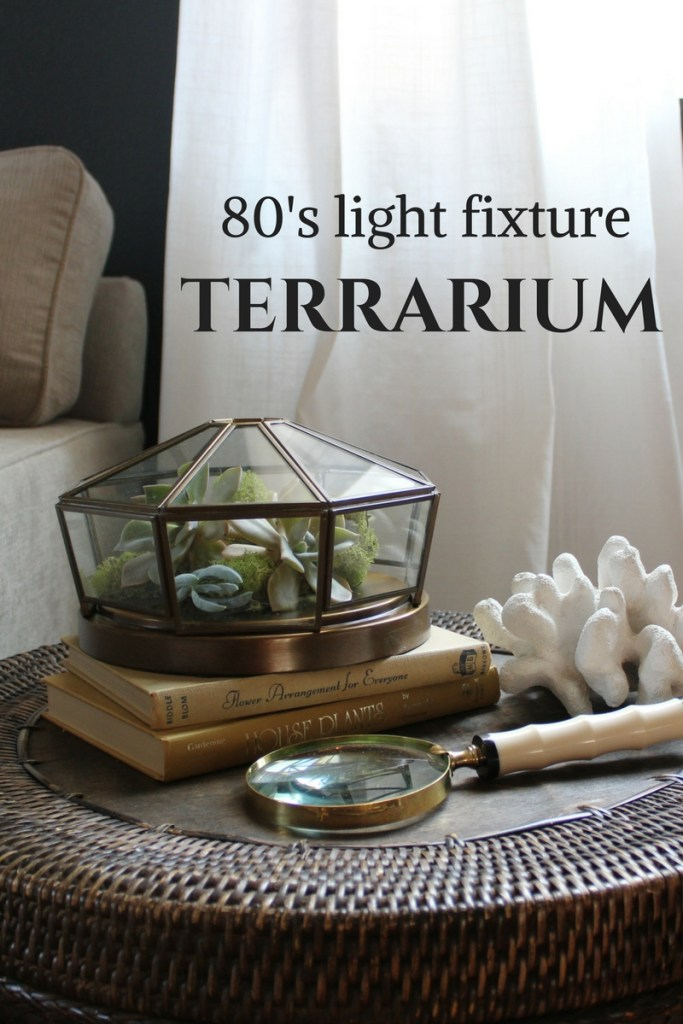 succulent-terrarium-reporposed-light-fixture
