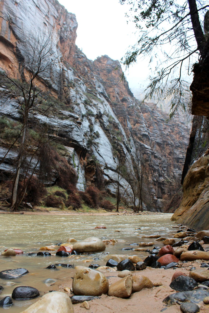 The entry to The Narrows in Zion