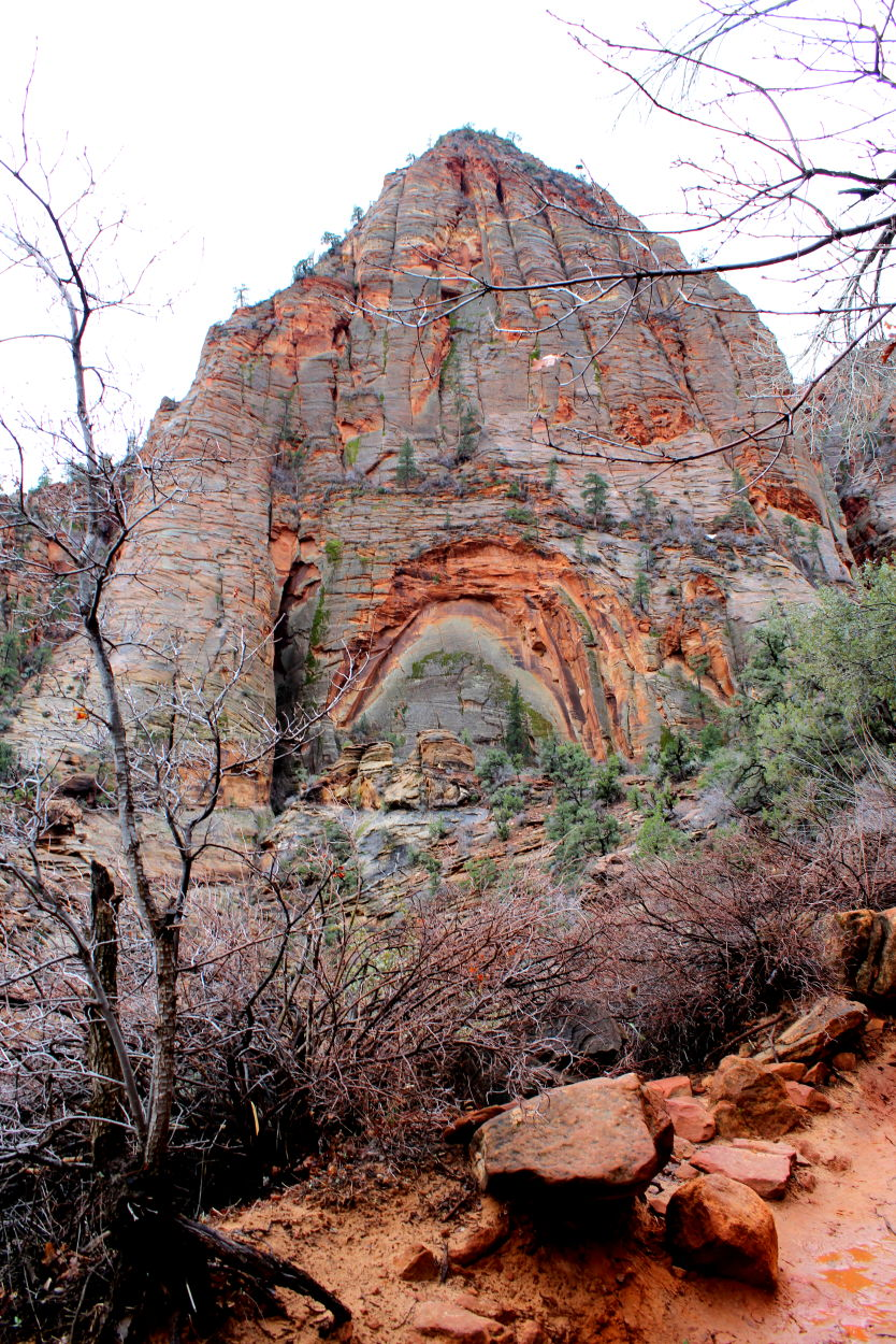 Arch in the rocks of ZIon National Park
