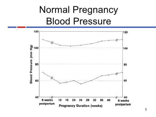 What Is Normal Blood Pressure In Pregnancy