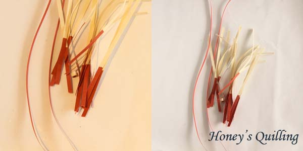 The importance of using custom white balance for product photography and how to set it - Honey's Quilling