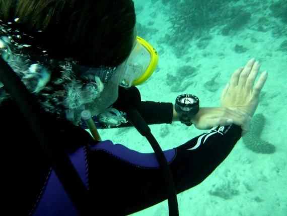 Learning underwater navigation