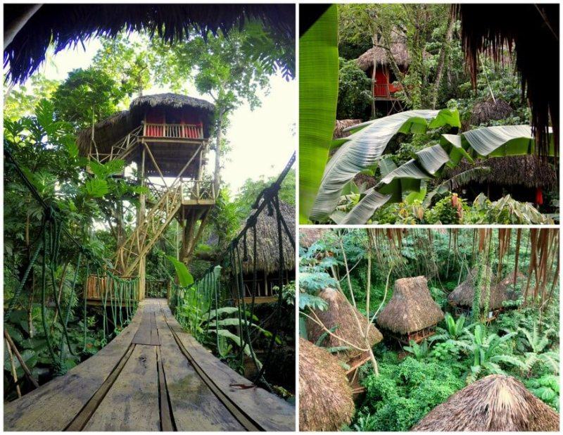 Tree House Village Samana