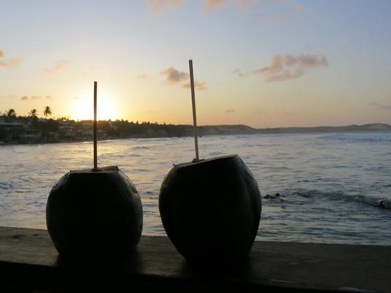 Coconuts in Priai de Pipa