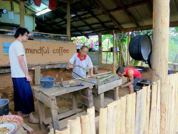Mindful coffee on the Mindful farm