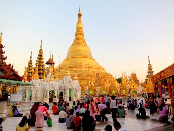 Shwedagon At Sunset