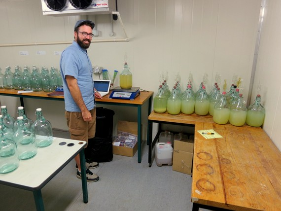 Wine Science Lab